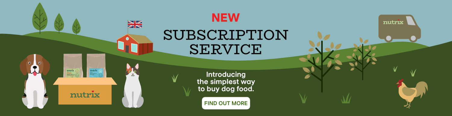 Dog food subscription service